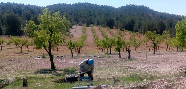 Las prácticas de manejo sostenible salvan el suelo mediterráneo