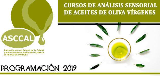 La DOP Priego de Córdoba pone en marcha un nuevo programa de formación sobre análisis sensorial