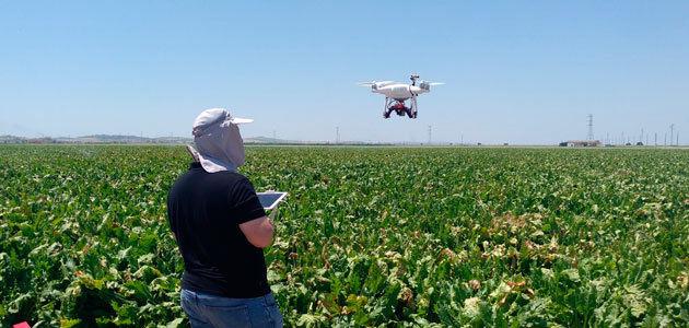 El dron, un aliado imprescindible en la investigación agronómica andaluza