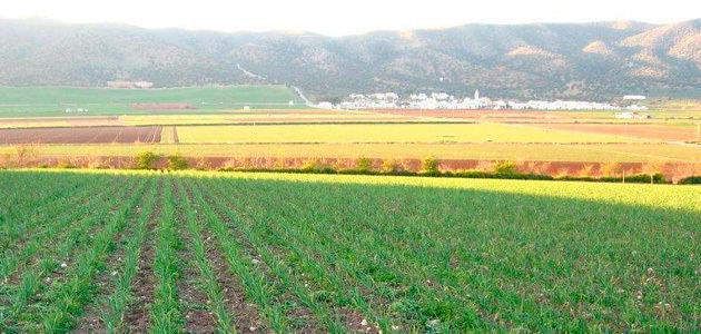 Andalucía priorizará por primera vez ayudas a la producción ecológica junto a parques naturales