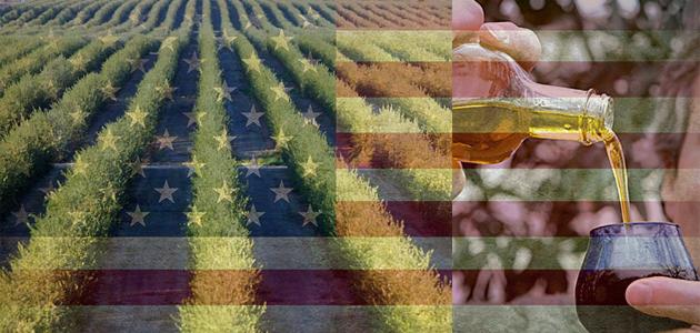 España lidera las exportaciones de aceite de oliva a Estados Unidos en 2017, con 82.350 toneladas