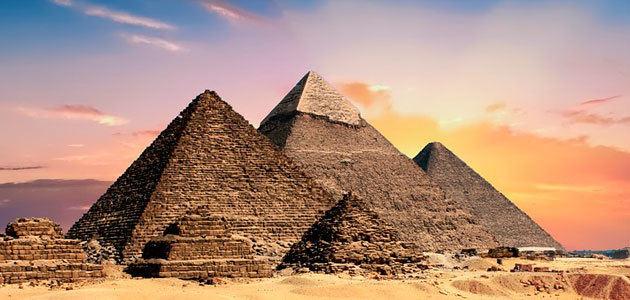 Oportunidades para invertir en el sector oleícola egipcio