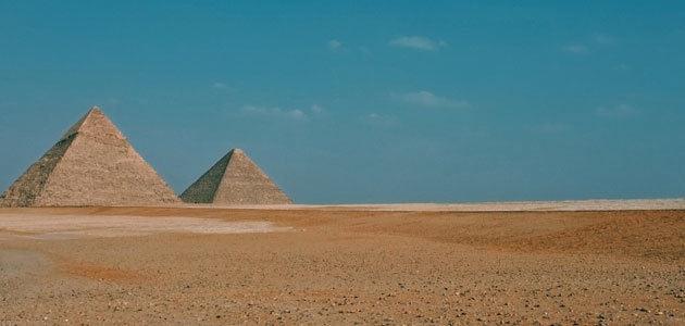 Egipto prevé plantar 100 millones de olivos durante los próximos cuatro años