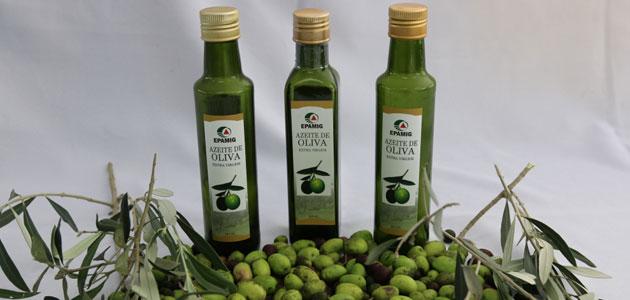 Brasil difunde la tecnología para el cultivo del olivo