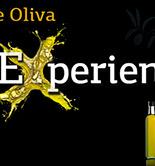 La Interprofesional del aceite de oliva lleva la cultura del oro líquido a 1.700 restaurantes