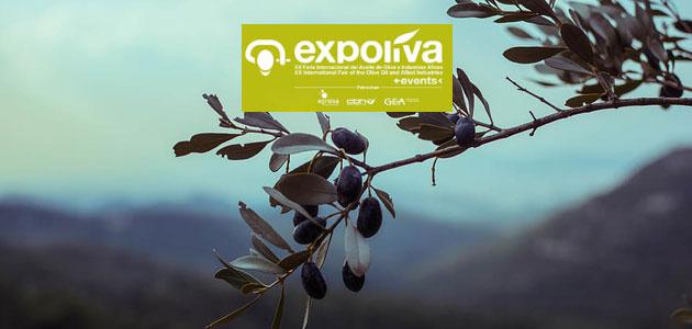 La olivicultura internacional centrará el Primer Diálogo Expoliva