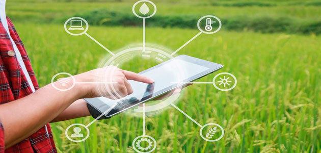Expoliva LAB by Geolit aglutinará a empresas relacionadas con la innovación y la tecnología aplicada al sector del olivar