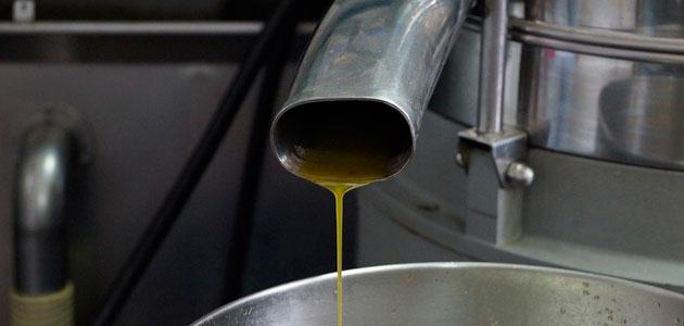 La eficacia de los Ultrasonidos y de los Pulsos Eléctricos de Alto Voltaje en la extracción de aceite