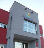 Acenorca exporta el 65% de su producción de aceitunas a una veintena de países