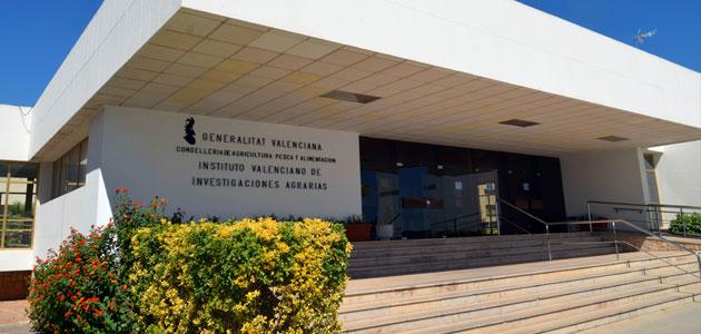 La Comunidad Valenciana acogerá un simposio internacional sobre la Xylella y su efecto en la Cuenca Mediterránea