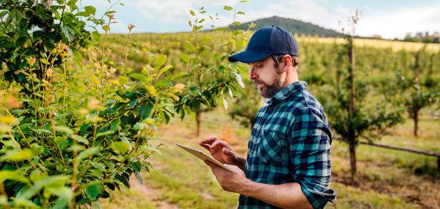 Llega a España Farmable, una app para la gestión de explotaciones de árboles frutales