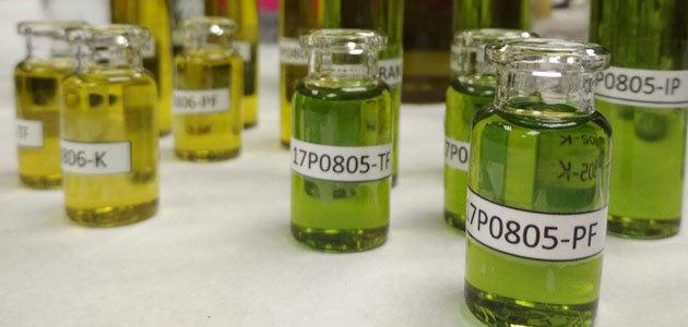 Crean un sistema para verificar el origen del aceite de oliva