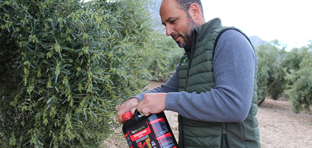 Diseñan un abono elaborado con algas y bacterias que evita el uso de químicos en cultivos agrícolas