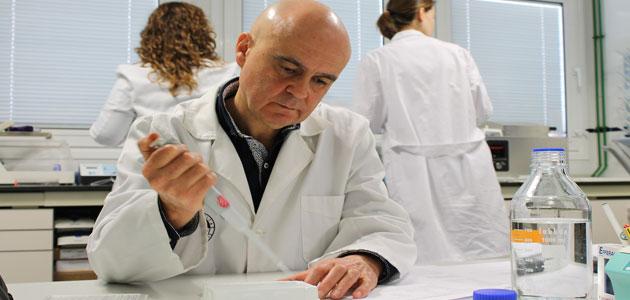 Científicos de la UJA describen que un compuesto del AOV favorece la cicatrización de las heridas