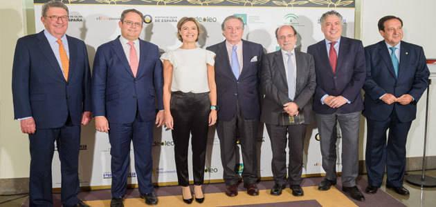 El Mapama y el tenista Rafa Nadal, Premio Especial Aceites de Oliva de España 2017