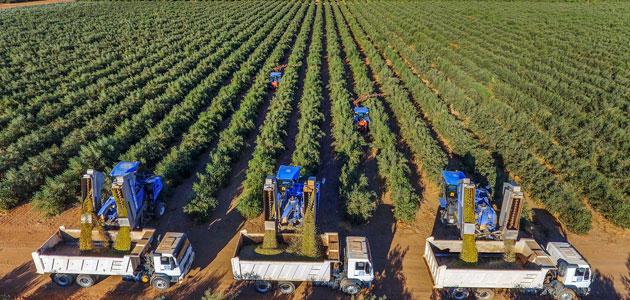 GEA firma el mayor contrato de su historia para construir una gran almazara en Arabia Saudí