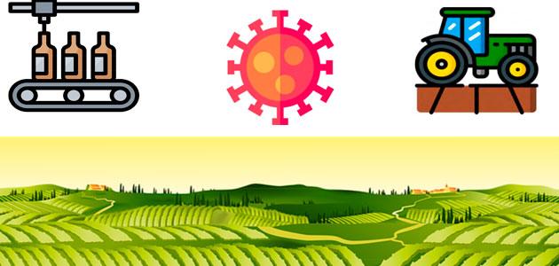 El Gobierno y las CCAA revisan el protocolo para prevenir brotes de COVID-19 en el sector agrario