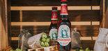 Biomasa del olivar para la elaboración de cerveza