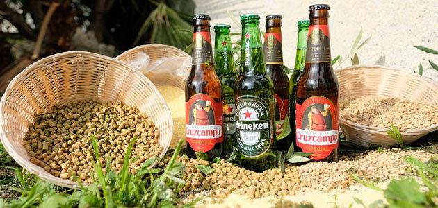 Biomasa del olivar jiennense para la elaboración de cerveza