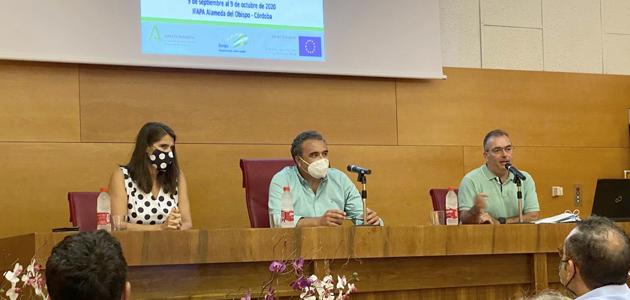 Arrancan los cursos y jornadas del Ifapa sobre el olivar para el curso 2020-2021