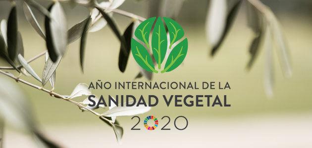 La FAO presenta 2020 como Año Internacional de la Sanidad Vegetal