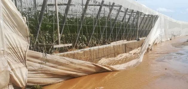 El Gobierno aprueba medidas urgentes para paliar los daños causados por los temporales