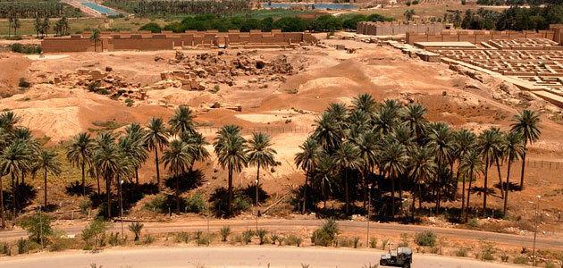 Oportunidades en el mercado de aceite de oliva de Iraq: las ventas crecerán un 70% hasta 2024