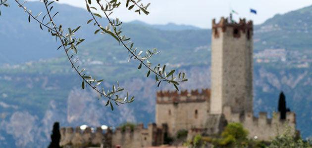 Italia pondrá en marcha en 2021 el Movimento Turismo dell'Olio
