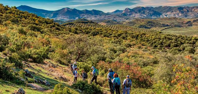 'A Jaén, a vivir experiencias': actividades turísticas para despertar tu espíritu viajero