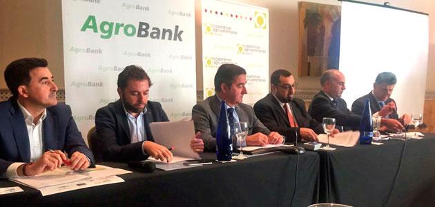 Cooperativas confirma una producción de 1.108.000 t. de aceite de oliva para Andalucía esta campaña