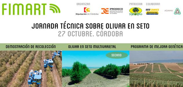 Córdoba acogerá el 27 de octubre una jornada sobre olivar en seto