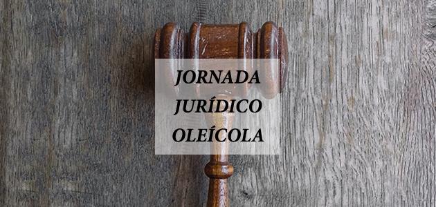 Cadena de valor, morosidad y calidad, a debate en la primera jornada jurídico-oleícola