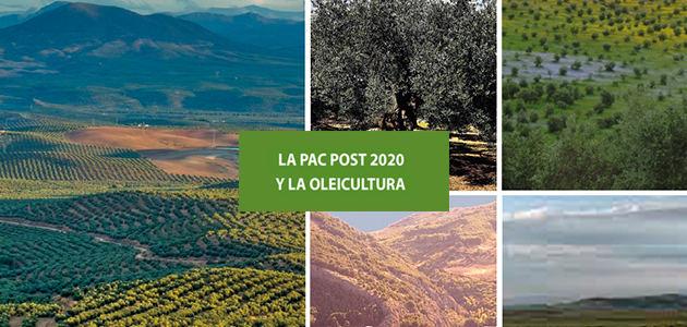 La PAC post 2020 y la oleicultura
