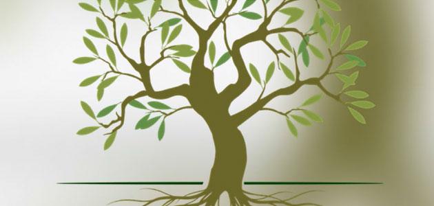 Un encuentro abordará la sostenibilidad y bioeconomía circular de la cadena de valor del olivo