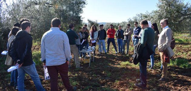 El olivar ecológico y la lucha contra el cambio climático, a debate en unas jornadas en Extremadura