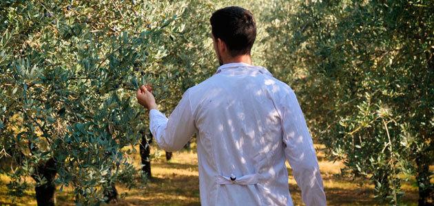 El relevo generacional en la agricultura, a debate en Agroexpo