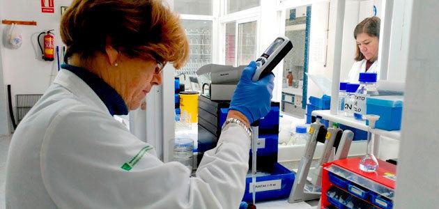 La Junta licita por 7,5 millones de euros la mejora de la eficiencia de los laboratorios agroalimentarios de Andalucía