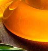 Logroño acoge el 'Foro La Grajera por la calidad del aceite de oliva virgen extra'