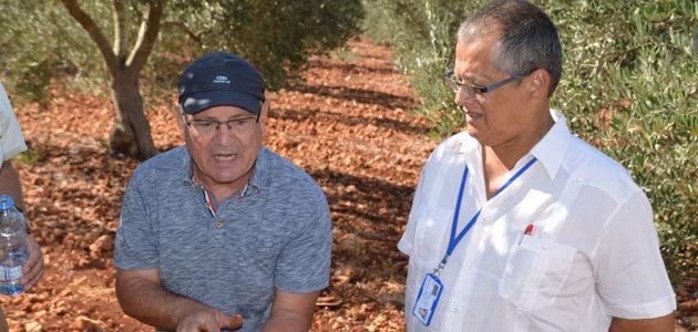 Almazara, un programa de formación de olivicultores en Líbano