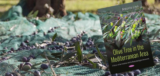 El olivo en el área mediterránea: un espejo de tradición e innovación biotecnológica