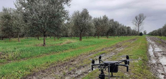 LIFE Resilience expone las mejores prácticas y tecnologías para la sostenibilidad de los cultivos