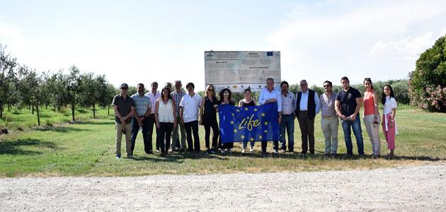 Life Resilience progresa en la lucha contra la Xylella fastidiosa en la Toscana