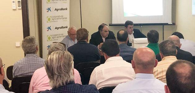 Antonio Luque estará al frente de Cooperativas Agro-alimentarias de Málaga otros cuatro años