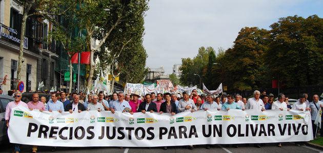 Miles de olivareros reclaman en Madrid precios justos para un olivar vivo