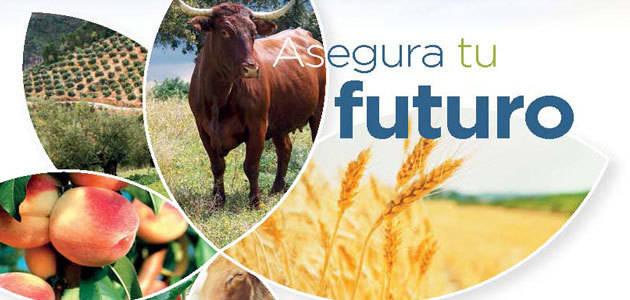 El Mapama edita la Guía del Seguro Agrario 2017