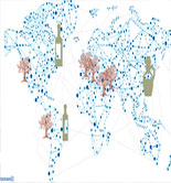 El aceite de oliva se elabora ya en 56 países de los cinco continentes, según un estudio de GEA Iberia
