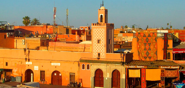 Desafíos y perspectivas del sector oleícola, a debate en Marruecos