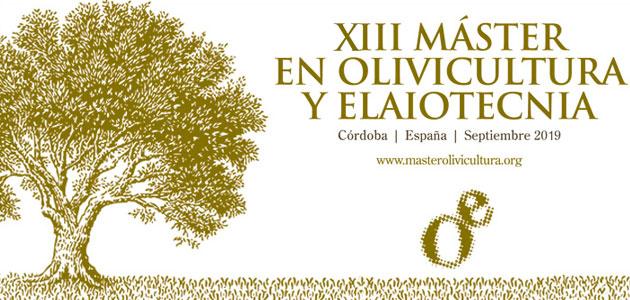 La XIII edición del Máster en Olivicultura y Elaiotecnia comenzará en septiembre