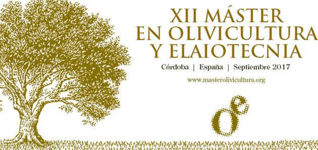 El XII Máster en Olivicultura y Elaiotecnia calienta motores