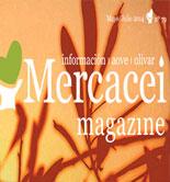 Llega Mercacei Magazine 79, un número cargado de novedades y contenidos exclusivos